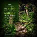 Gen 3:8 | scripture pictures @ alittleperspective.com